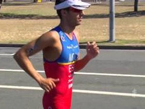 2016 Jewel World Triathlon Gold Coast - Elite Men's Highlights
