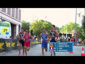 2014 ITU World Triathlon Hamburg - Elite Men's highlights