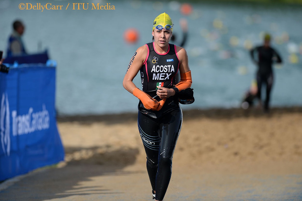 2014 ITU World Triathlon Grand Final Edmonton - Age Group